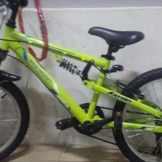 20 Inch Polygon. Kid Mtb Bike.