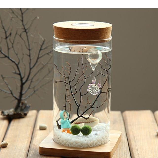 Aqua Terrarium Diy Set Long Jar Teachers Day Gift Design