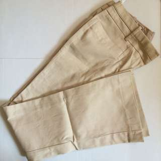 Dorothy Perkins Trouser Pants