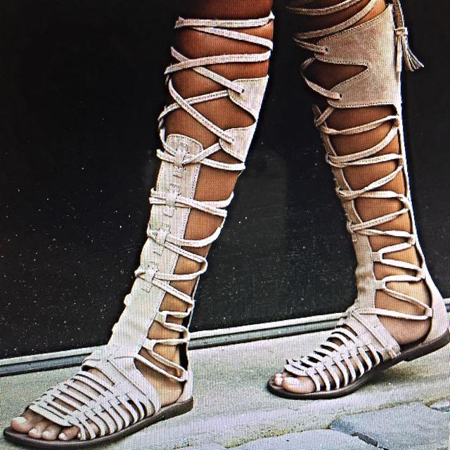 Gladiator Sandal Knee High Suede Leather