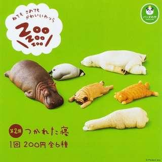扭蛋 休眠動物 狗