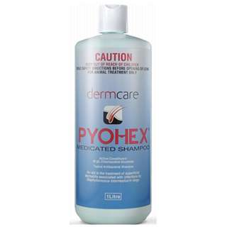 Pyohex Medicated Shampoo