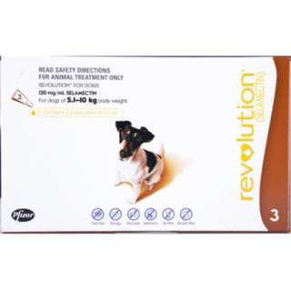 Revolution For Small Dogs (5.1 – 10Kg)