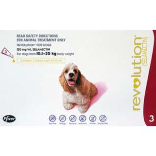 Revolution For Medium Dogs (10.1 – 20Kg)