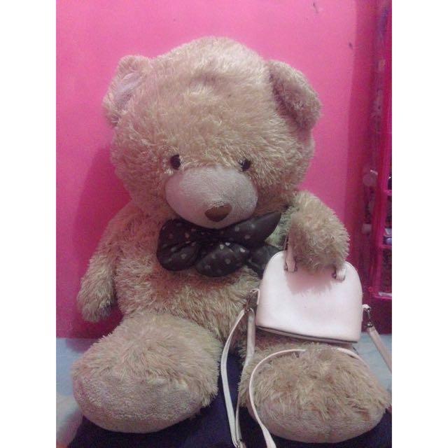 Taddy Bear Ukuran Besar