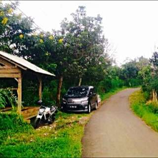 Tanah Bedugul Bali