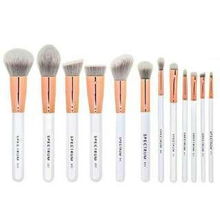 Spectrum Brushes Marbleous 12 Piece Brush Collection