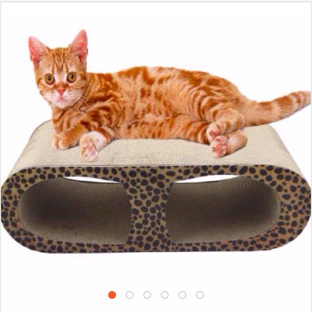 現貨+免運 ✨大尺寸天使眼瓦楞紙貓抓板 豹紋 寶可夢 全新 舒壓