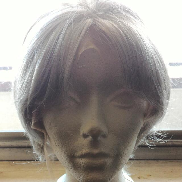 BRAND NEW GREY SHORT WIG