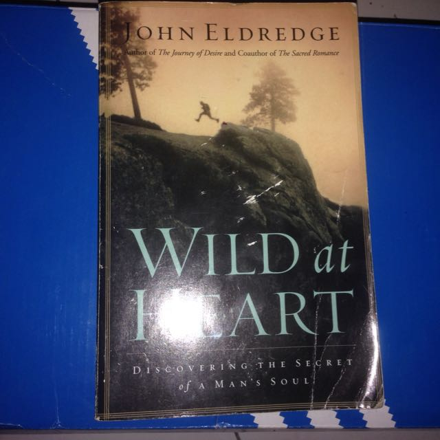 Novel Wild At Heart