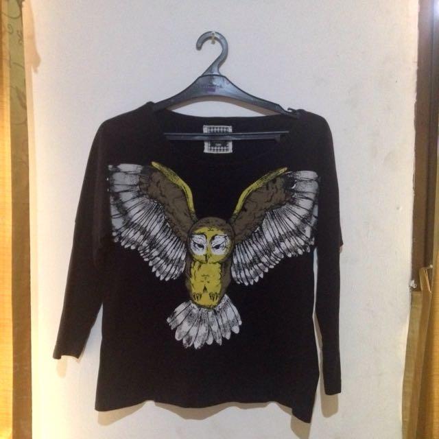 Endorse Owl Series