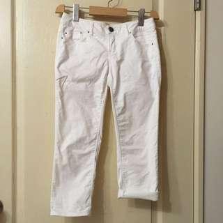 ebc 白色7分褲