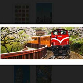 Pintoo___阿里山小火車