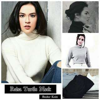 RAISA TURTLE NECK