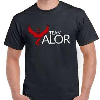 Team Valor Shirt - Mens