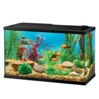 Topfin 5.5 Gallons Fish Tank
