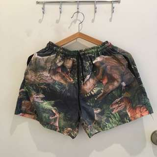 Jurassic Dinos Swimwear