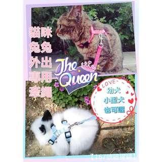 (現貨)貓咪兔兔天竺鼠專用牽繩+H型胸背帶組 多種顏色可選 I字型工字型