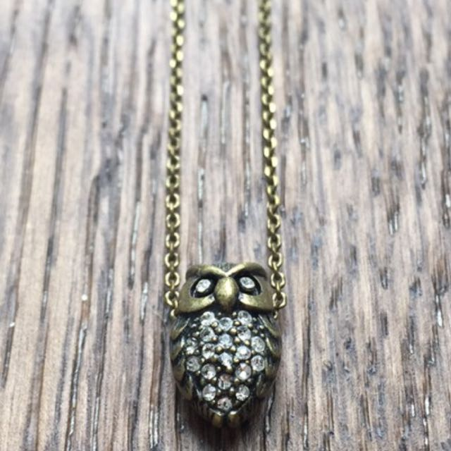 Fossil Owl Necklace
