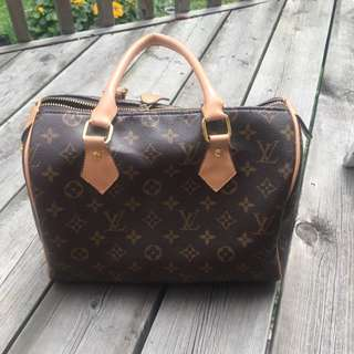 FAKE Louis Vuitton Purse