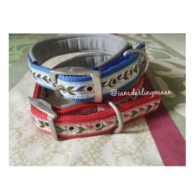 Blue And Red Padded Dog Collar