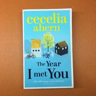 The Year I Met You By Cecilia Ahern