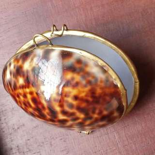 貝殼盒子 飾品首飾珠寶盒