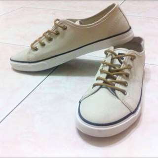 Beige High Quality Canvass Sneakers