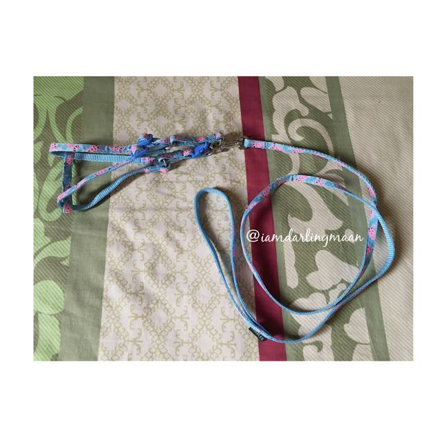 Charles Blue Dog Harness With Leash