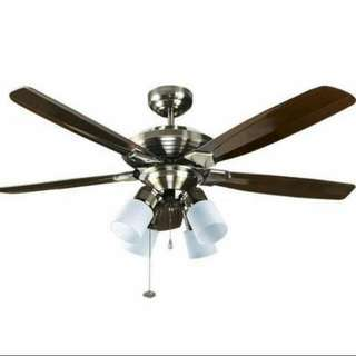 Strong Wind! Ceiling Fan Offer