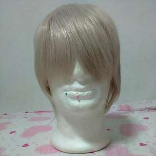 Short Light Ash Silver Wig