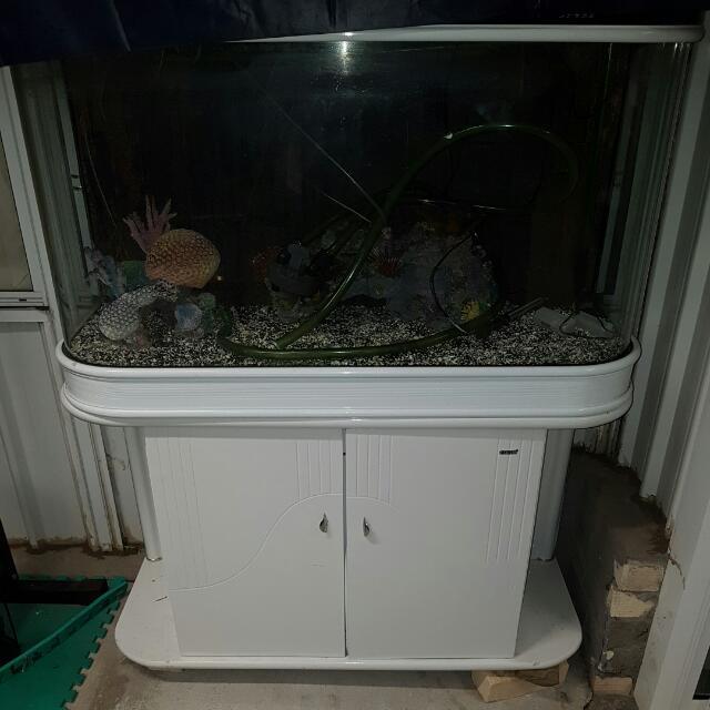 Premium PEARL WHITE cabinet And Fishtank