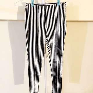 直條紋彈性內搭褲