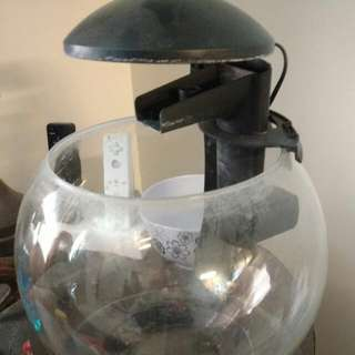 1.8 Gallon Filtered Fish Tank With LED Lighting