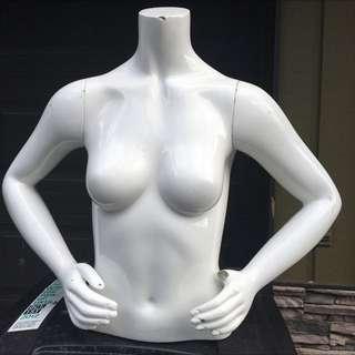 Half Torso Mannequin White