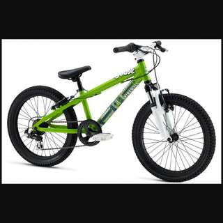 Looking For Mongoose 20 Inch Kids Mtb