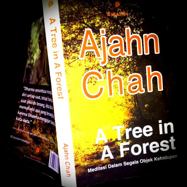 Ajahn Chah - A Tree In A Forest ( Meditasi Dalam Segala Objek Kehidupan ) Book