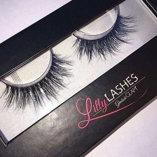 Lilly Lashes In MIAMI