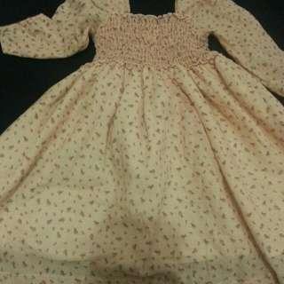 Little Miss Dress/blouse
