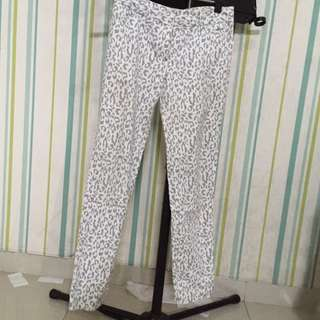THE EXECUTIVE GREY LEOPARD PANTS ( SMALL )