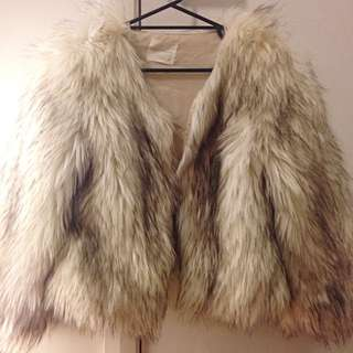 Korean Fur Coat (fake)