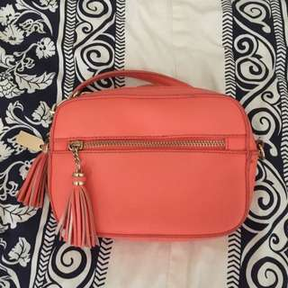 Aldo Coral Cross body Purse