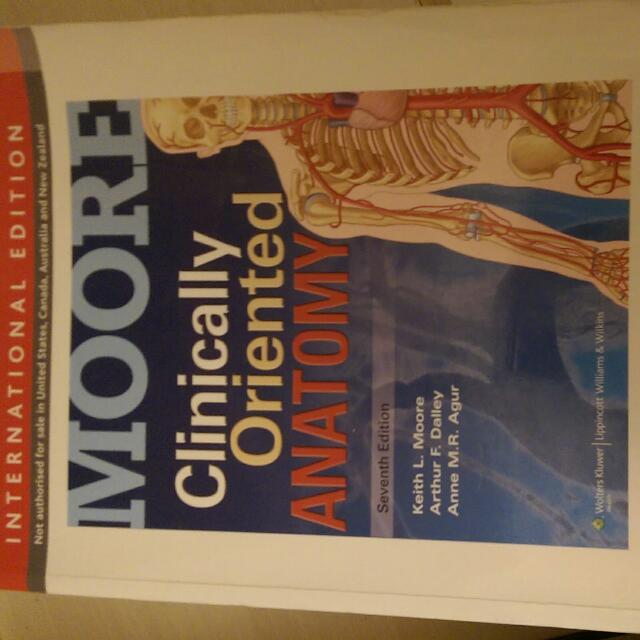 Keith L Moore Clinically Oriented Anatomy Choice Image Human Body