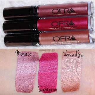🌟IN STOCK🌟 BUNDLE Ofra Cosmetics Summer Metallic Collection
