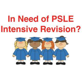 PSLE Intensive Revision