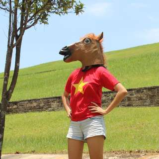 [Available For Pick Up Immediately!] Horse Head Mask
