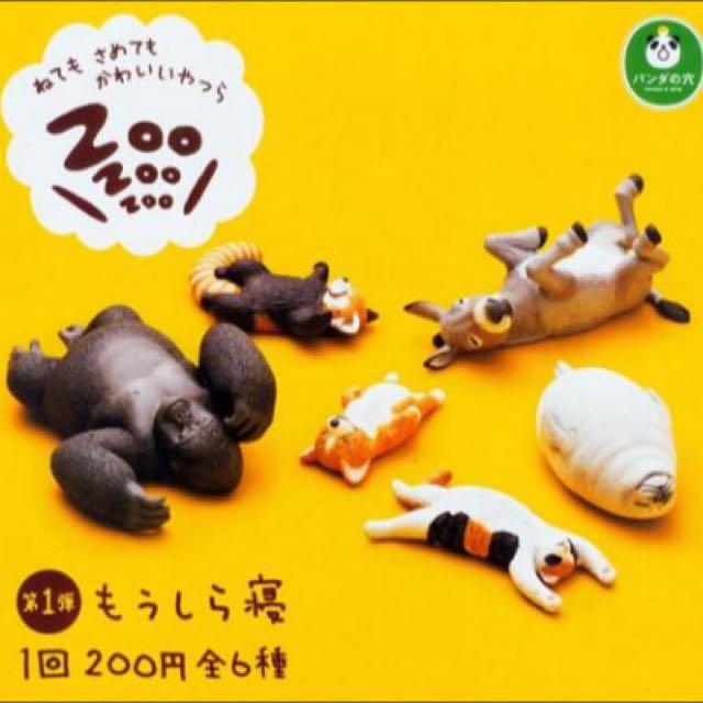(待匯款)休眠動物園 柯基 扭蛋
