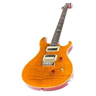 LOOKING FOR: PRS SE Custom 24