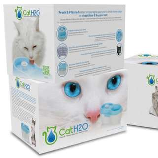 Cat H2O Water Fountain