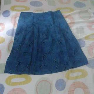 Pretty Blue Skirt